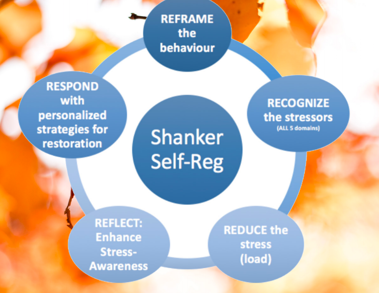 5 Steps of Shanker Self-Reg