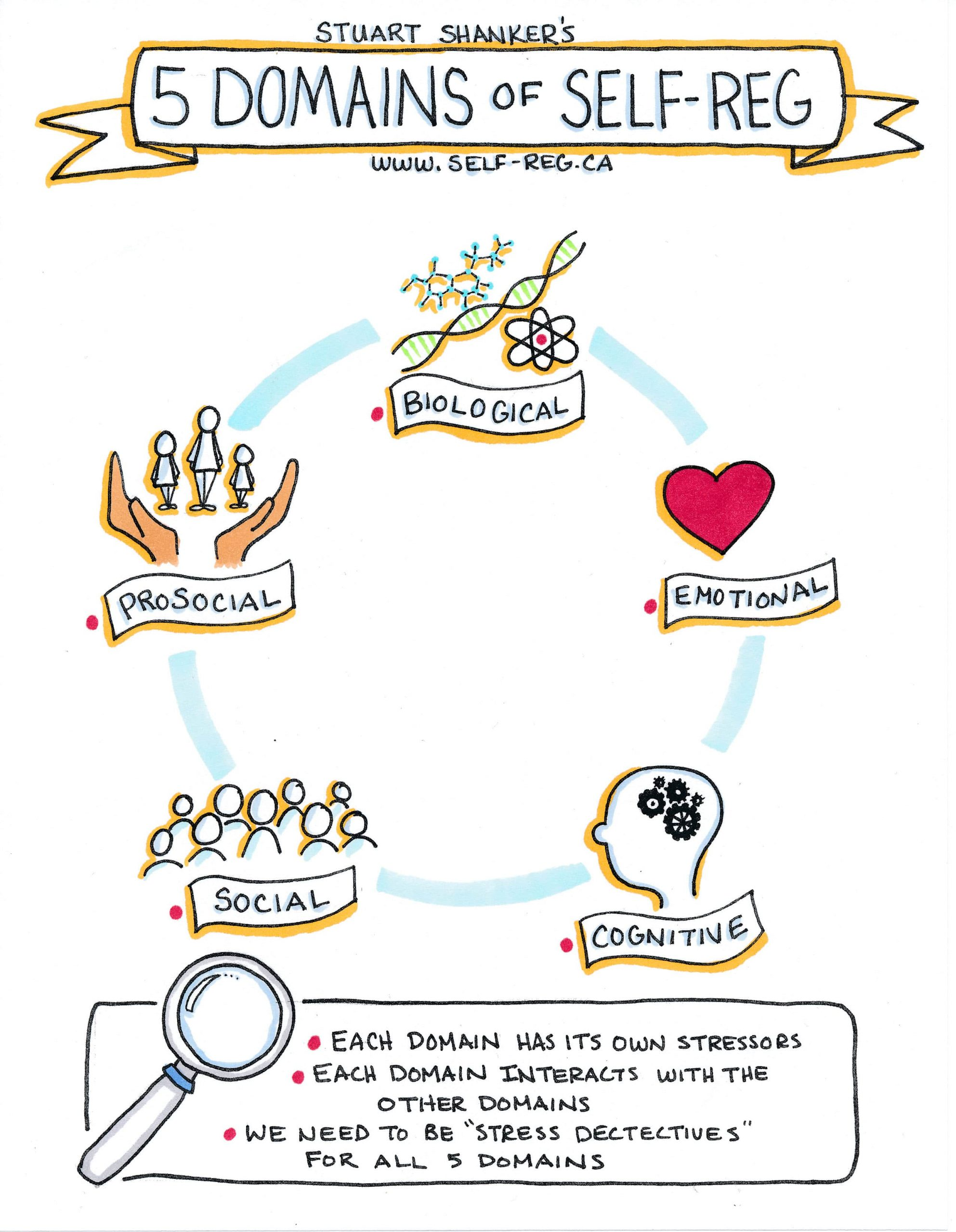The 5 Domains of Self-Reg