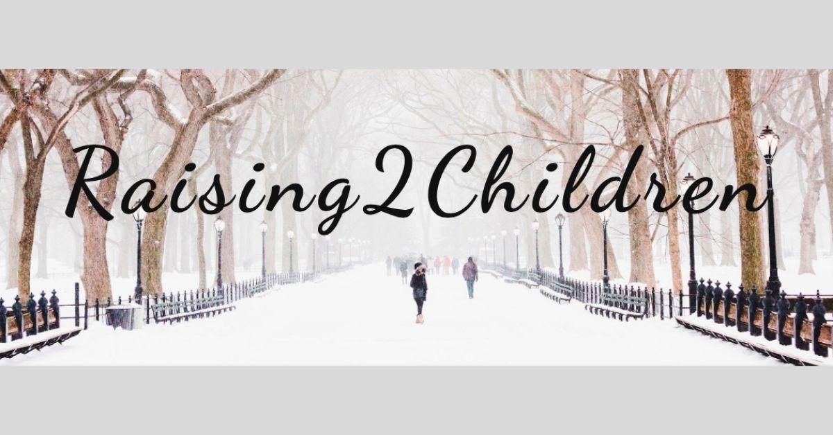 Raising 2 Children Self-Reg Book Review