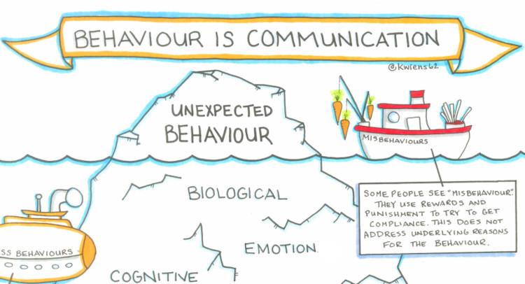 Icon Self-Reg Behaviour is Communication