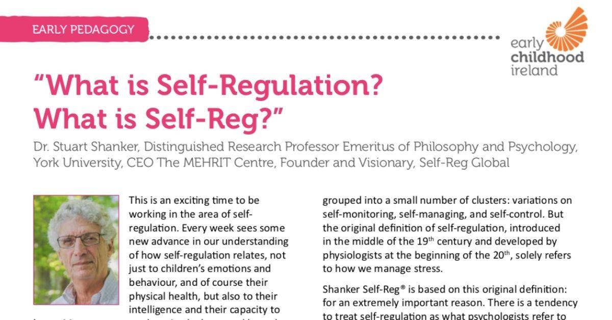 Self-Reg in Ireland